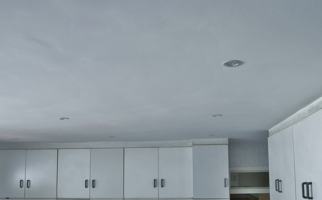Skimmed Ceiling Using Rhino Board Border Roofing